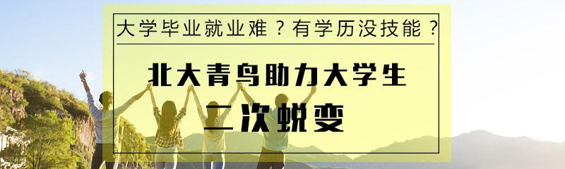武汉北大青鸟-大学生就业难